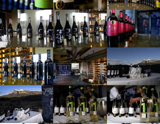 Presentación oficial del proyecto Vignerons Independientes de Huesca