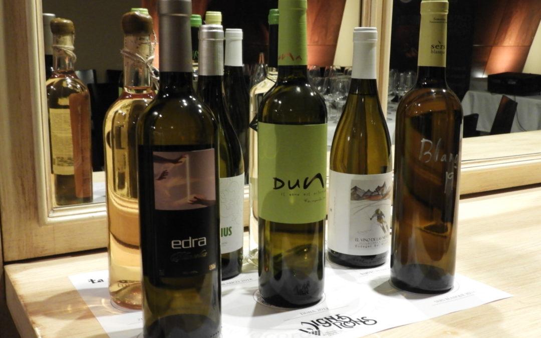 El primer panel de Cata de Vignerons Independientes de Huesca – Año II