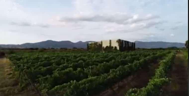 Vignerons Independientes de Huesca - Las Bodegas - La Corona De Aínsa tienda de vinos - wine shop - vignerons huesca